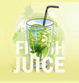 summer fresh juice cocktail vector image vector image