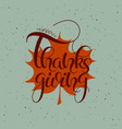 thanksgiving hand drawn text happy thanksgiving vector image