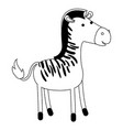 zebra cartoon in black dotted contour vector image