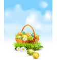 easter eggs basket vector image