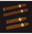 Burning cigars set vector image