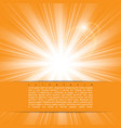 bright sunlight vector image vector image