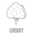 cherry icon outline style vector image