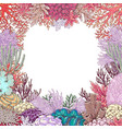 corals square frame vector image vector image