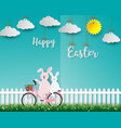 cute rabbits on bicycle happy in the garden vector image