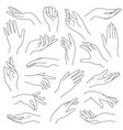 female hands line outline elegant woman hand vector image vector image