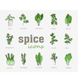 Greenery icon set Vegetable green leaves vector image vector image