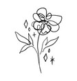 minimalist line art flower poppy contour drawing vector image