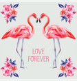 slogan love forever rose and pink flamingos vector image vector image