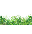 tropical plants line horizontal border vector image vector image