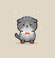 cute cat isolated on gray backgroun vector image vector image