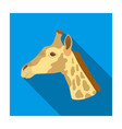 giraffe icon in flat style isolated on white vector image