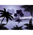 Night tropic island vector image vector image