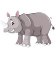 a rhinoceros on white background vector image