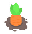 carrot in ground icon isometric style vector image vector image