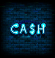cash neon text vector image