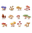 different types of mushrooms on a white background vector image vector image