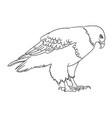 eagle line art 08 vector image vector image