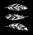 feathers white lines set vector image