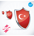 I Love Turkey Flag vector image vector image