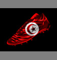 soccer football boot with the flag of tunisia vector image vector image
