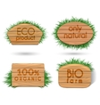 Wooden eco food signs with grass vector image