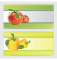 Two design banners vector image