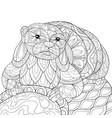 adult coloring bookpage a cute otter on the stone vector image vector image