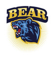 angry grizzly bear roaring logo mascot vector image