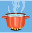 boiling water in pan vector image