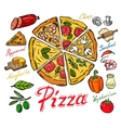 color pizza vector image vector image