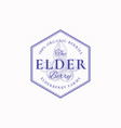 elderberry farm badge or logo template hand drawn vector image vector image