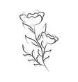 minimalist tattoo flowers spring line art herb vector image vector image