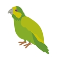 silhouette green parrot animal bird vector image