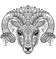 tangle ram coloring book page for adult vector image