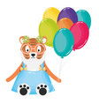 cute tiger with balloons helium in birthday party vector image