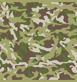 military green print seamless vector image