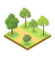 park alley with big trees isometric 3d icon vector image