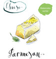 Pieces of delicious gourmet organic parmesan