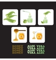 Set icons with pieces of aloe vera and honey vector image