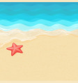 cartoon starfish on the sea shore vector image