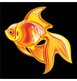 collection mascots goldfish vector image vector image