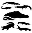 CrocodileSet vector image