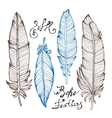 Hand drawn bird feathers closeup isolated on white vector image vector image