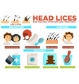 head lice risk factors symptoms and treatment vector image vector image
