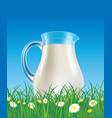 milk jug on grass with flowers vector image vector image