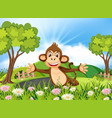 monkey in beautiful nature vector image