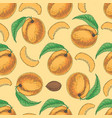 seamless pattern with ripe apricot vector image vector image