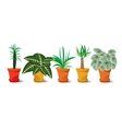 five pots with plants vector image vector image