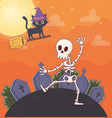flying cat and dancing skeleton gravestones vector image